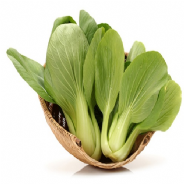 Pak Choi Green revolution - appx 300 seeds